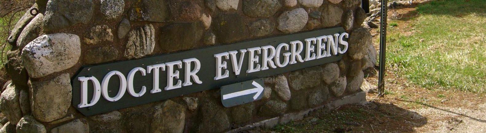 Docter Evergreens